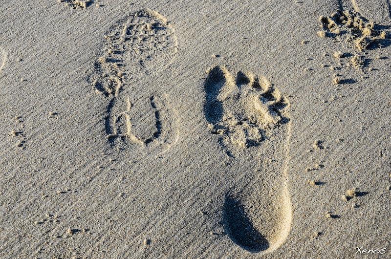 Empreintes sable pieds creux