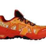 Raidlight Dynamic Ultralight EVO chaussures running test